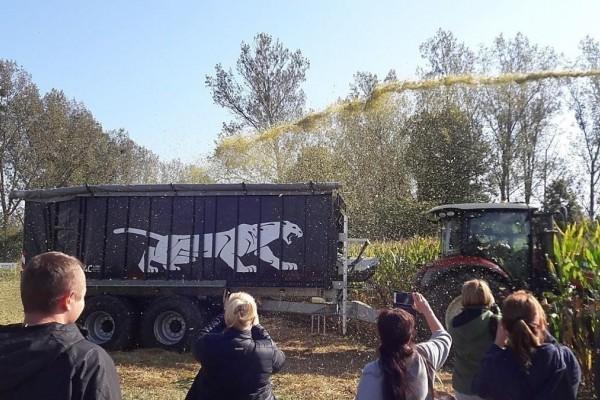 Dzień Kukurydzy w Mrozowie